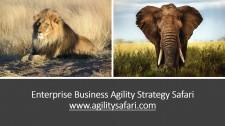 Enterprise Business Agility Safari