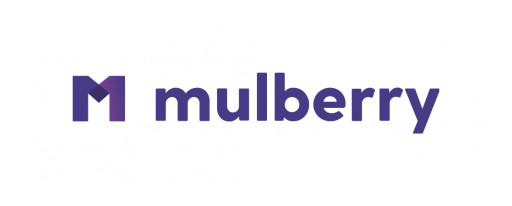 Mulberry Survey: U.S. Consumers Eager to Protect Expensive Purchases From Life's Messy Reality