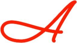 Adigami, Inc.