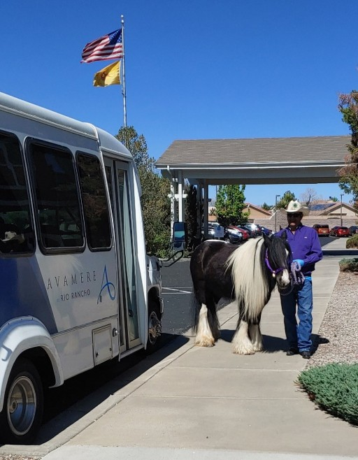 Therapy Horse Cheers Up Avamere at Rio Rancho Residents