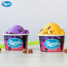 Magnolia Boba Ice Cream in Ube and Magno.
