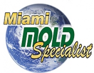 Miami Mold Specialists