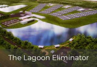 Lagoon Eliminator