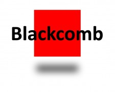 Blackcomb Consultants Logo