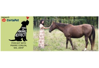 The Animal Effect podcast