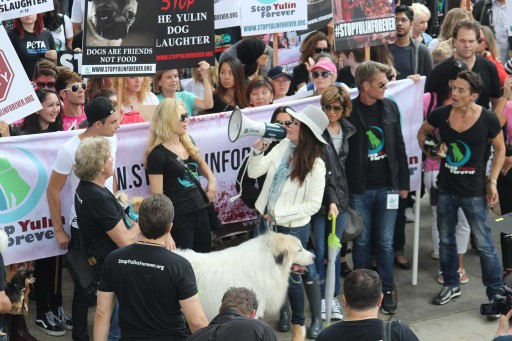 Lisa Vanderpump's Foundation Committed to Ending the Horrific Yulin Dog Meat Festival