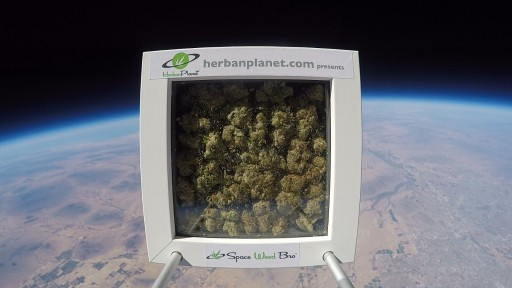 Herban Planet Launches 'Space Weed Bro' Marijuana Into Space