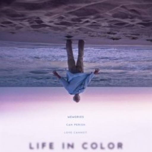 The Creative Journey of 'Life in Color'