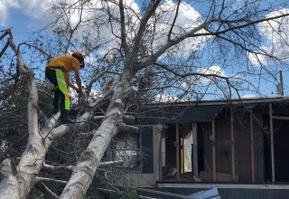 Scientology Volunteer Minister helps clear away trees.