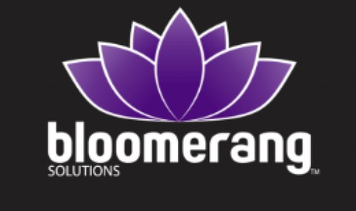 Bloomerang Solutions Continues to Grow in the Digital Marketing Industry