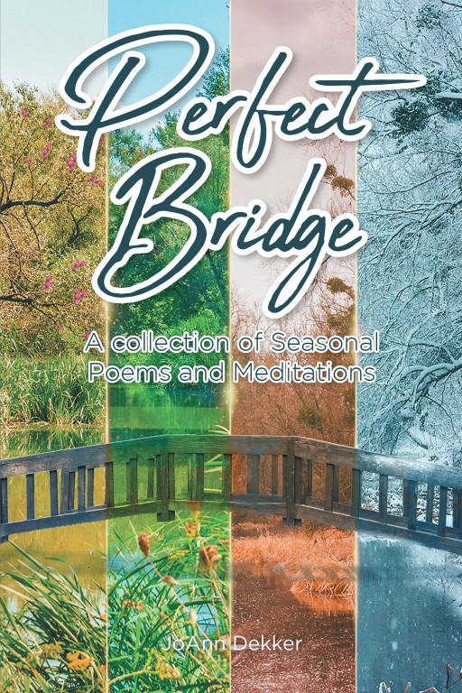 JoAnn Dekker's New Book, 'Perfect Bridge', Is a Faith-Strengthening Walk Along the Different Wonders and Weathers of Life