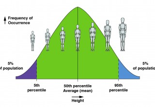 Population Height Distribution