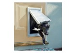 Endura Flap Dog door for Doors
