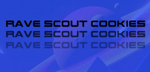 Salman Jaberi Launches Rave Scout Cookies, a Multimedia EDM Platform Devoted to Bolstering POC and LGBTQ+ Talent