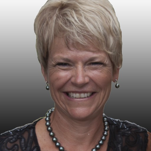 Godlan, Infor CloudSuite Industrial (SyteLine) ERP Specialist, Welcomes Laurie Croft as VP of Sales