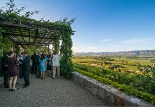 Winery Vineyard Party
