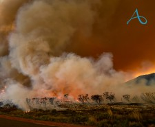 Avamere Acts Amongst Oregon Wildfires