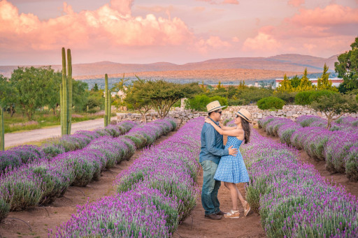 For Unforgettable Weddings, Choose the State of Guanajuato