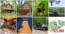 Last Chance to Own Entire Treehouse Resort Through Photo Competition