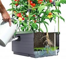 City Jungle Planter from BioGreen