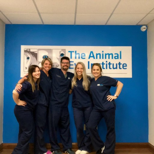 New Office for the Animal Eye Institute of Northern Kentucky