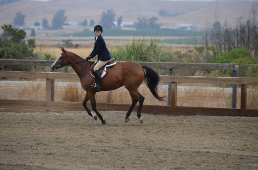 Capital Access Group and the SBA 504 Loan Program Pony Up for Strides Riding Academy With $2.5 Million Loan to Purchase a 20-Acre Equestrian Facility in Petaluma, CA