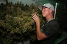 Joshua Haupt inside his grow house