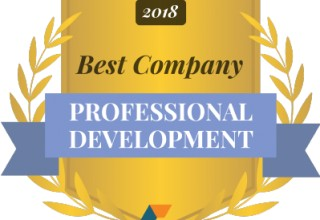 Best Companies for Professional Development