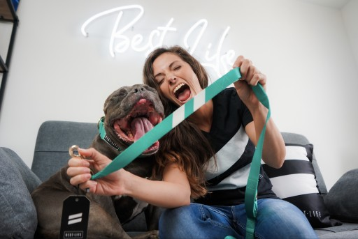 San Diego's Best Life Leashes Helps More Dogs Find Forever Homes With Just Two White Stripes