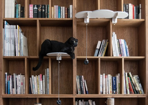 CATSSUP: A Floating Playground for Cats