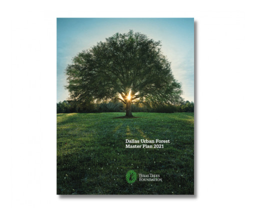 Texas Trees Foundation Presents the First Urban Forest Master Plan to the City of Dallas for Next Steps