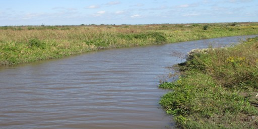 The Double Bayou Watershed Partnership Announces Release of Draft Plan for Public Comment