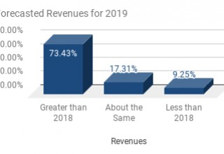 Forecasted Revenues For 2019