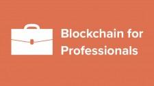 Blockchain for Professionals