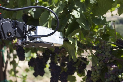 Vineyard Robot Prototype to Debut at FutureFarm Expo in Oregon