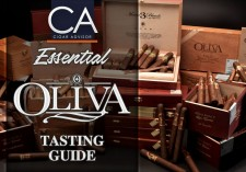 Essential Oliva Tasting Guide