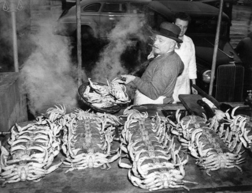 An Original Fisherman's Wharf Sicilian Family's Stories and Recipes