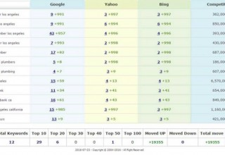 Ranking Report