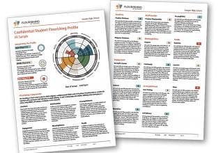 Sample Flourishing Report
