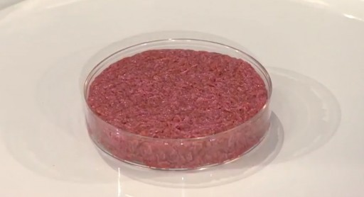 Synthetic (Cultured) Meat Technologies to Reach $19.8 Million in 2027