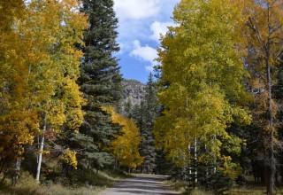 Fall in Pagosa Springs