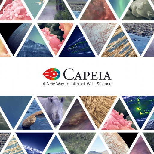 Launch of the Science Platform Capeia