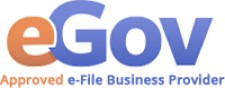 Approved e-File Business Provider