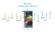 TerraSense Mobile Application