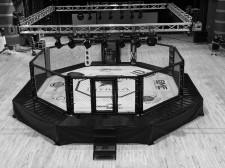 Invicta FC Cage Designed by Zebra Athletics