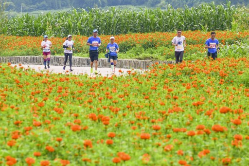 Flower Sea Marathon in Rural China Boosts Economy, Attracts 3,000 Runners