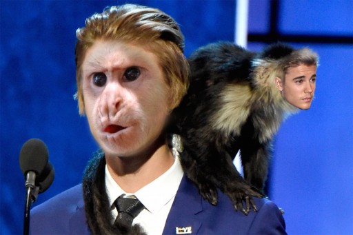 RescueCenter.org Offers Justin Bieber a Free Educational Trip to Costa Rica, Will Name Rehab Wing After Justin if He Doesn't Buy a Monkey