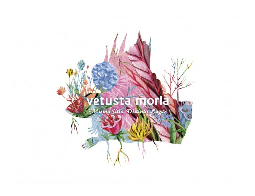 Spanish Indie Rock Band Vetusta Morla, Released New Album and Announce International Tour for First Half of 2018