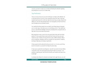5 Pillars of Success - Sample Page 2