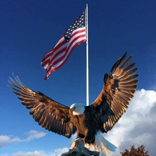 Vietnam Veteran Steve Trammell of Eagle Iron Works to Place His Series of Six Brass Eagle Military Statues for Sale